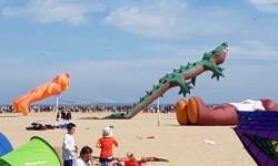 Las playas de Valencia se llenan de cometas en el 19 del Festival Internacional del Viento (47)