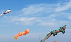 Las playas de Valencia se llenan de cometas en el 19 del Festival Internacional del Viento (48)