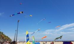 Las playas de Valencia se llenan de cometas en el 19 del Festival Internacional del Viento (51)