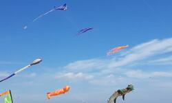 Las playas de Valencia se llenan de cometas en el 19 del Festival Internacional del Viento (53)