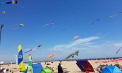 Las playas de Valencia se llenan de cometas en el 19 del Festival Internacional del Viento (56)