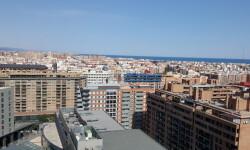 Restaurante Vertical en Valencia (5)
