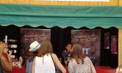 fotos de los expositores de la Mostra de Vins , cabes licors i Aliments de Valencia vinos cava alimentos (23)