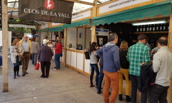 fotos de los expositores de la Mostra de Vins , cabes licors i Aliments de Valencia vinos cava alimentos (25)