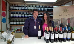 fotos de los expositores de la Mostra de Vins , cabes licors i Aliments de Valencia vinos cava alimentos (30)