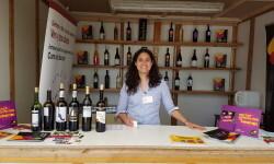fotos de los expositores de la Mostra de Vins , cabes licors i Aliments de Valencia vinos cava alimentos (41)