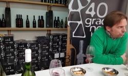 fotos de los expositores de la Mostra de Vins , cabes licors i Aliments de Valencia vinos cava alimentos (51)