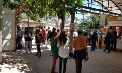 fotos de los expositores de la Mostra de Vins , cabes licors i Aliments de Valencia vinos cava alimentos (53)