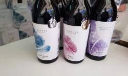 fotos de los expositores de la Mostra de Vins , cabes licors i Aliments de Valencia vinos cava alimentos (74)