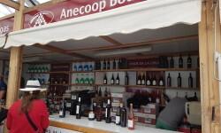 fotos de los expositores de la Mostra de Vins , cabes licors i Aliments de Valencia vinos cava alimentos (92)