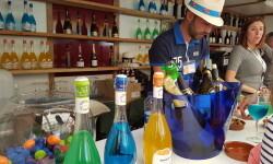 fotos de los expositores de la Mostra de Vins , cabes licors i Aliments de Valencia vinos cava alimentos (93)