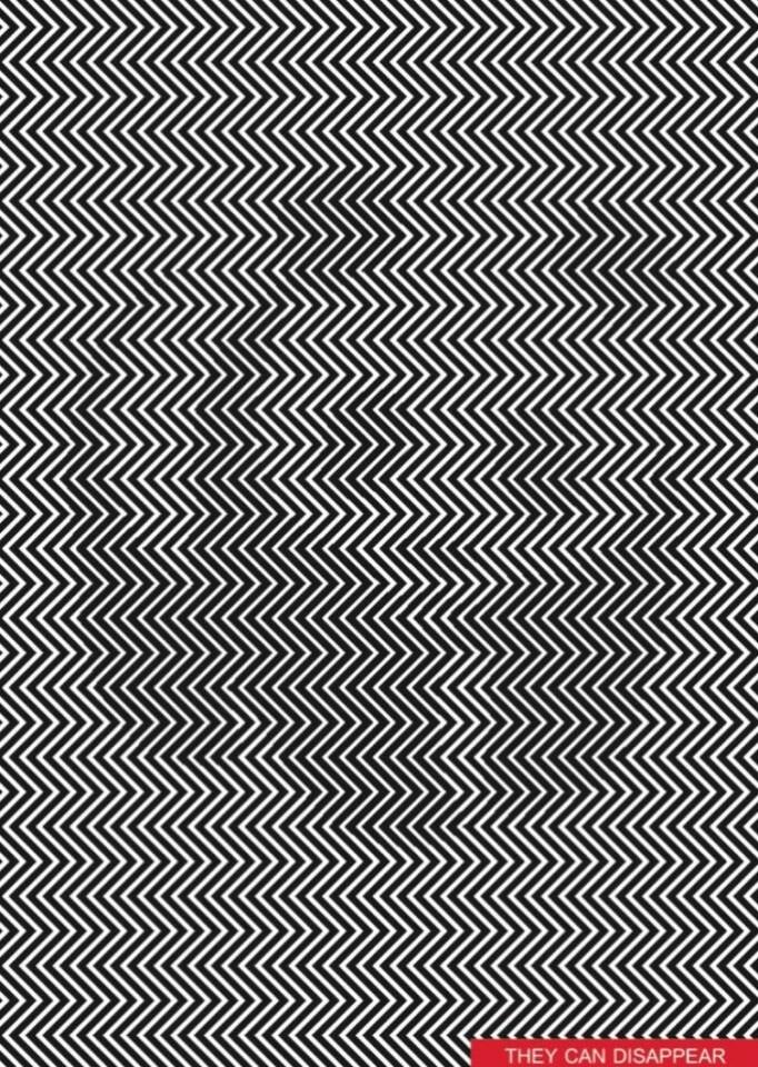 Artista-creó-una-ilusión-óptica-de-un-panda-por-estar-en-peligro-de-extinción-1