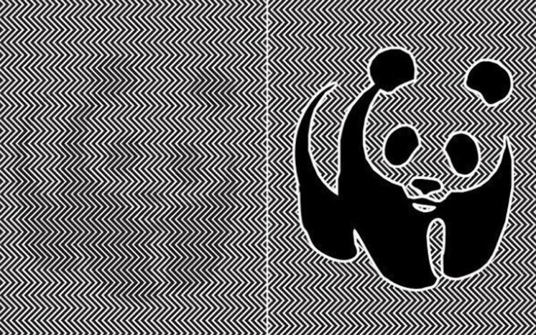 Artista-creó-una-ilusión-óptica-de-un-panda-por-estar-en-peligro-de-extinción-2