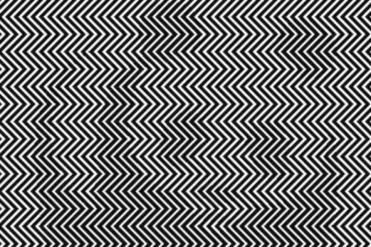 Artista-creó-una-ilusión-óptica-de-un-panda-por-estar-en-peligro-de-extinción-4