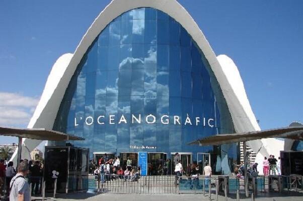 Aventura bajo el mar-la propuesta educativa del Oceanogràfic para la Escuela de Verano del Oceanogràfic de Valencia.