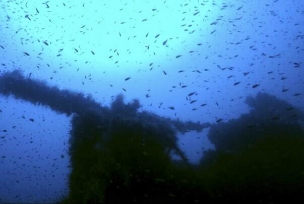 Encuentran el naufragio de un submarino británico de la Segunda Guerra Mundial.