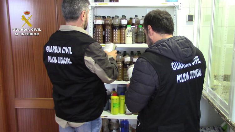 La Guardia Civil interviene más de 120 toneladas de aceite de girasol, palma y aguacate que iban a ser distribuidos como aceite de oliva (3)