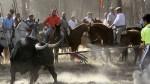 La Junta de Castilla y León prohíbe que se mate al Toro de la Vega (2)