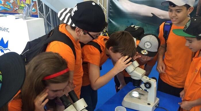 Los niños participan en el análisis del plancton.