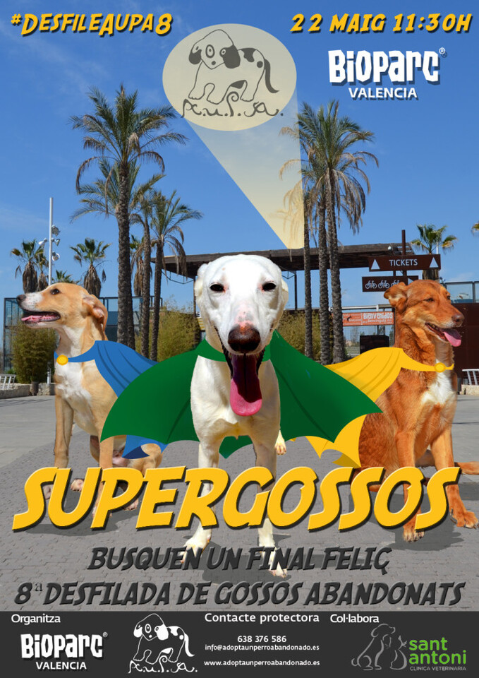 SUPERPERGOSSOS web