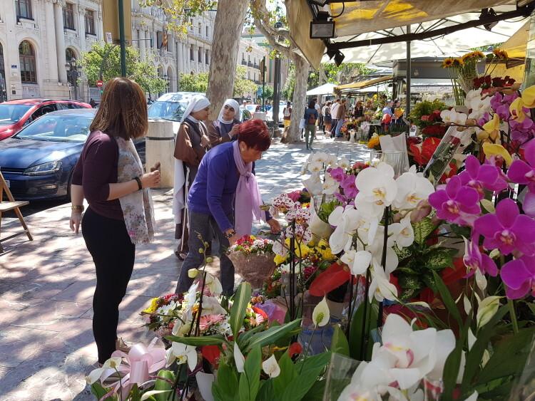 flores 1 de mayo dia de la madre foto jose cuñat 20160501_130543 (11)