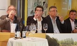 presentación nuevos vinos Bodegas Ontinium 20160523_190214 (22)