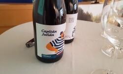presentación nuevos vinos Bodegas Ontinium 20160523_190214 (3)