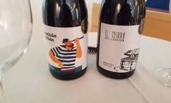 presentación nuevos vinos Bodegas Ontinium 20160523_190214 (4)