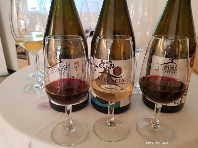 presentación nuevos vinos Bodegas Ontinium 20160523_190214 (49)