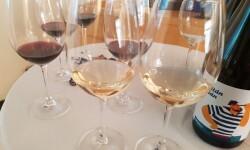 presentación nuevos vinos Bodegas Ontinium 20160523_190214 (50)