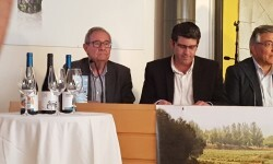 presentación nuevos vinos Bodegas Ontinium 20160523_190214 (8)