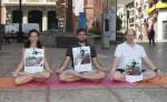 160606 día mundial del yoga  (1)