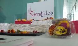 51 Concurso de Coctelería de la Comunidad Valenciana y Región de Murcia ganadores (50)