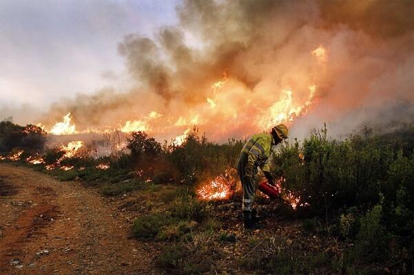 Controlado el incendio de Bolbaite y comienza a estar estabilizado el de Carcaixent.