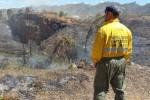 Divalterra ha movilizado 930 brigadistas en los incendios de Carcaixent, Bolbaite, Benifairó de les Valls y Terrateig.
