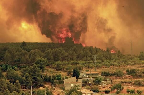 Divalterra tiene en activo 26 brigadas en los trabajos de extinción de los tres incendios de la provincia.