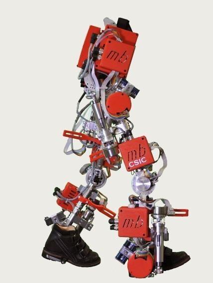 El CSIC presenta el primer exoesqueleto infantil del mundo para atrofia muscular espinal f