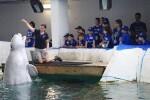 El Oceanogràfic ultima los detalles de la Escuela de Verano para niños más novedosa y divertida.