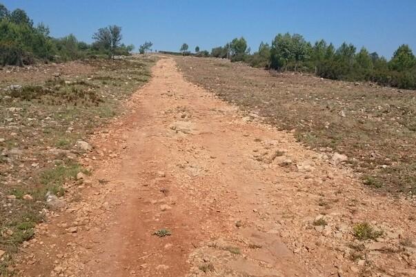 Las brigadas de Divalterra trabajan para proteger el área forestal de Enguera.