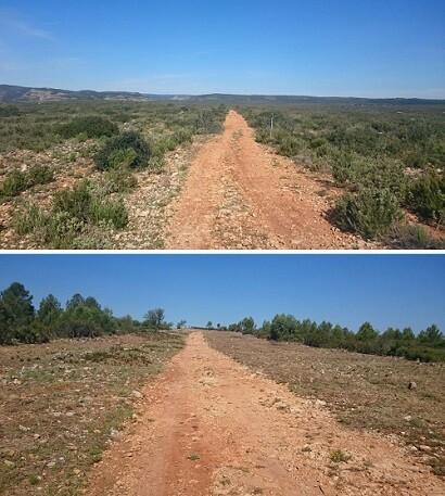 Tramo del camino de los valladinos, antes y después de la intervención.