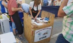 Galería y fotos del 7 Concurso de All i Pebre tradicional Illa del Palmar 20160711_190644 (49)