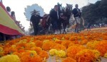 La Batalla de Flores será más amplia y con mayor difusión en su 125 aniversario.