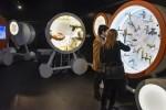 """La Obra Social """"la Caixa"""" y Aguas de Alicante presentarán la exposición '¡H2Oh! Los secretos del agua de tu ciudad'."""