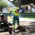 Parques y Jardines contrata a 16 personas para garantizar el mantenimiento del nivel del servicio durante el verano.