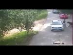 El escalofriante video del momento en que un tigre mató a una mujer en China