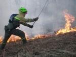 130715 Brigadista apaga fuego_tcm7-288793
