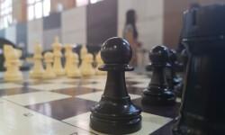 Hou Yifan campeona mundial de ajedrez en la presentación del Festival Internacional de Ajedrez 'Valencia Cuna'20160804_101707 (180)