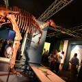 La exposición 'Els nostres dinosaures' recibe más de 90.000 visitantes en su primer mes abierta al público.