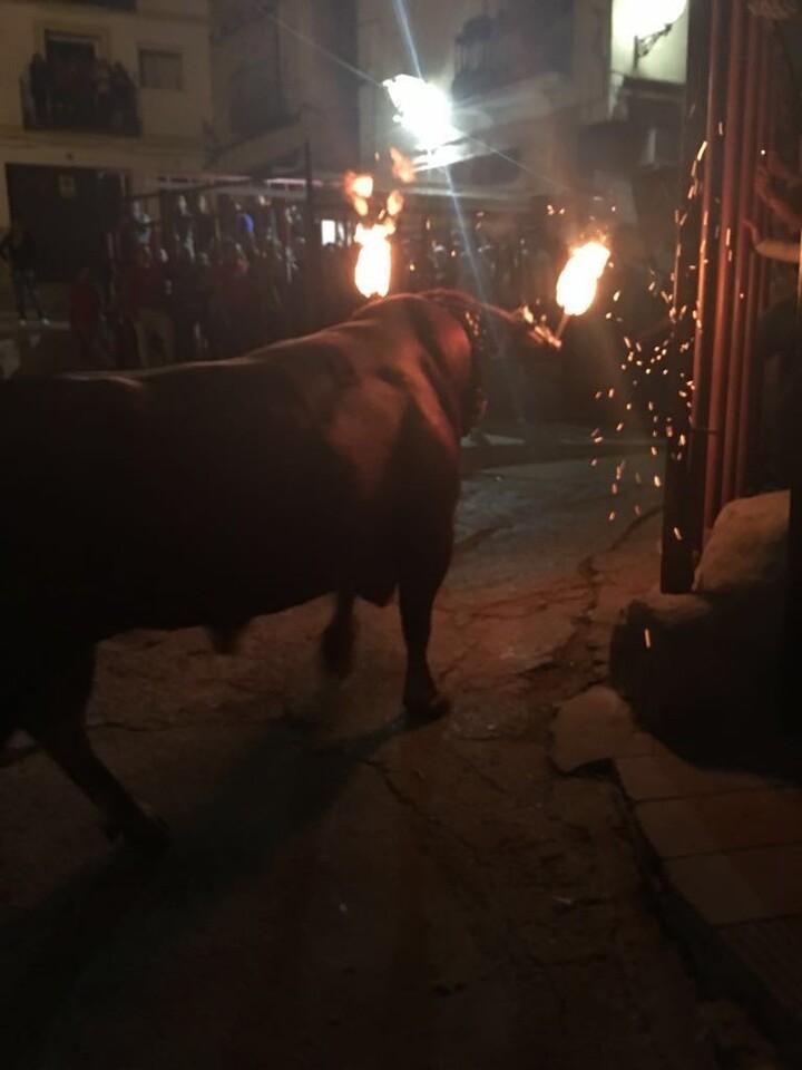 fiestas de 'bous al carrer' 20160813_andilla (toro enbolado) (39)