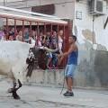 fiestas de 'bous al carrer' 20160813_andilla (toros) (17)